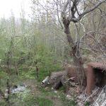 15_04_16-Iran_2-070