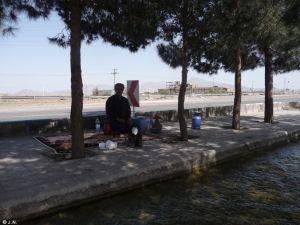 Lunch picnic with Ali Reza