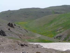 15_06_03-Iran_2-387