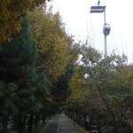 15_11_18-Iran_3-099