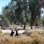 15_11_28-Iran_3-161