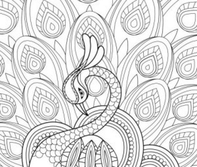 Coloring Pages To Print  Free Pages