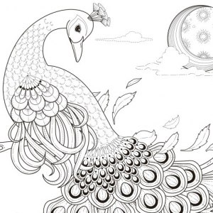 printable free coloring pages # 24