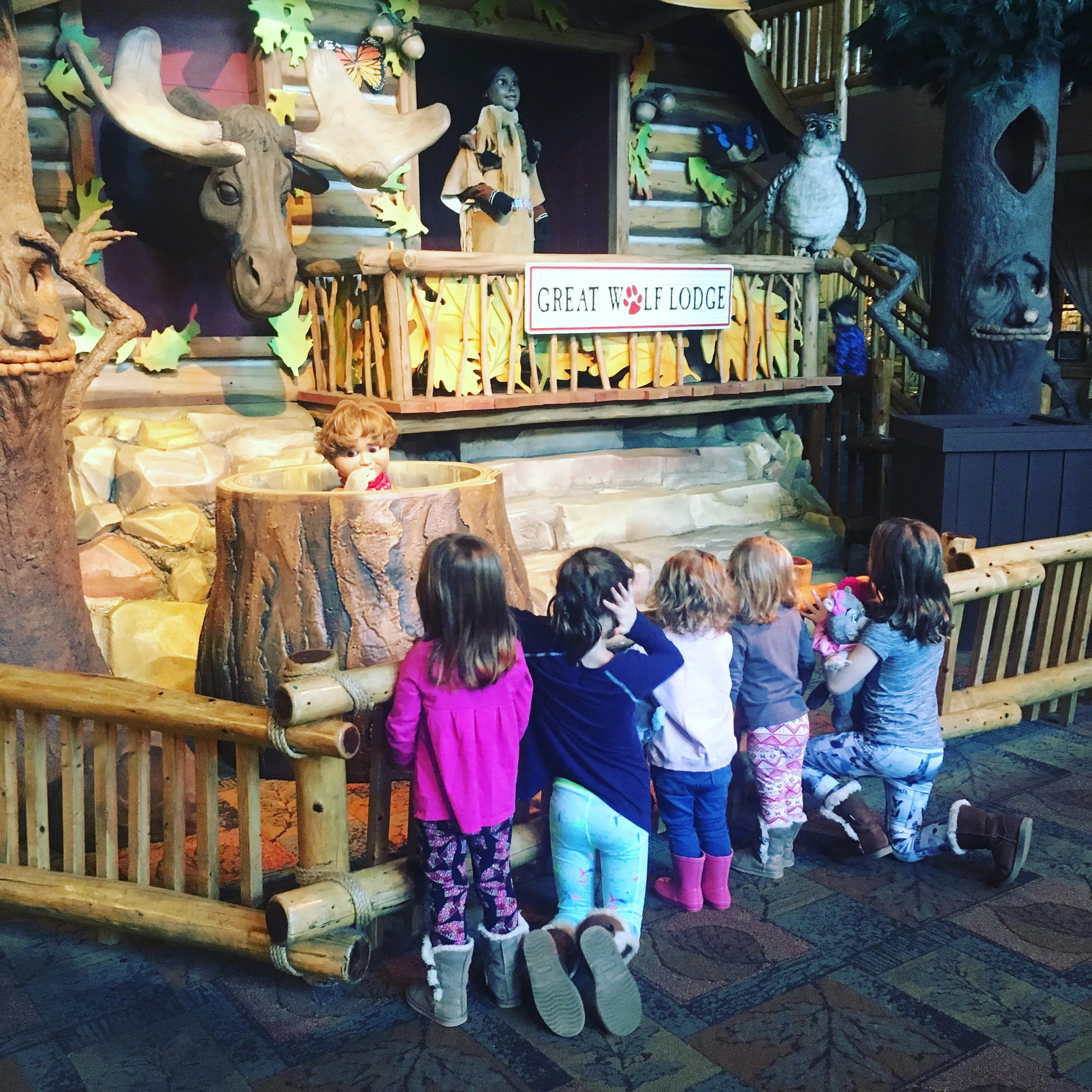 Discount Coupon for Great Wolf Lodge Williamsburg in ...  |Great Wolf Williamsburg
