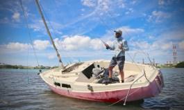 fly fishing guadeloupe