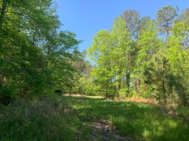 hunting land for sale leake county ms