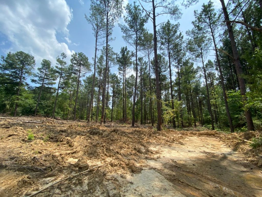 land for sale in madison county ms