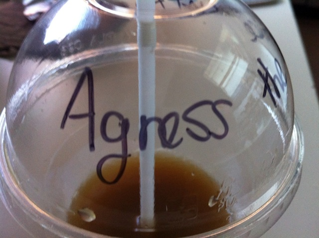 """Agness (he put an extra """"s"""" :P)"""
