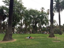 11 - echo_park_los_angeles_california