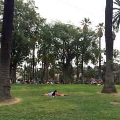 11 - echo_park_los_angeles_california