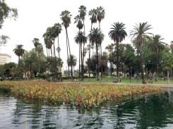 7 - echo_park_los_angeles_california