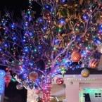 12 - wakefield_winter_wonderland_saugus_santa_clarita_christmas_lights_los_angeles