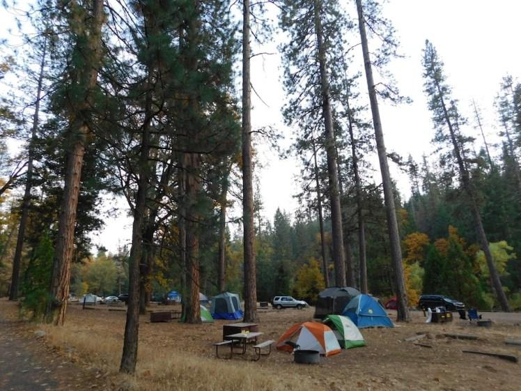 5-wawona-campground-yosemite