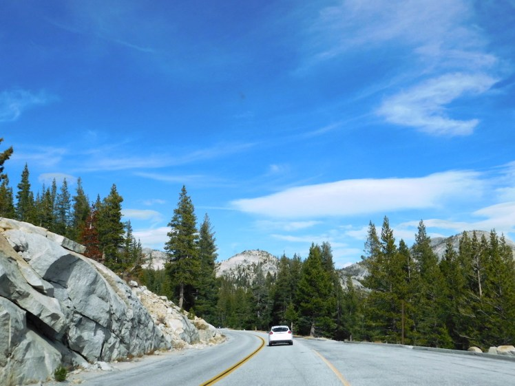 Tioga Pass Yosemite National Park