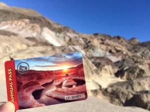 $500 road trip, Joshua Tree National Park, Zion National Park, Death Valley National Park