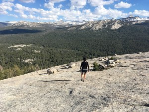 Lembert Dome, Tuolumne Meadows, Yosemite National Park