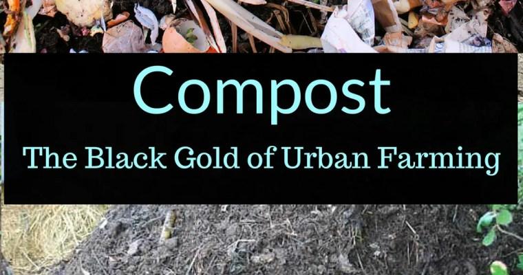 Compost: Black gold?