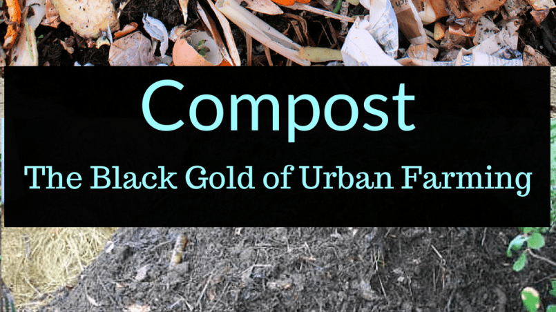 Compost: The Black Gold of Urban Farming, Compost, Backyard Eden, www.backyard-eden.com