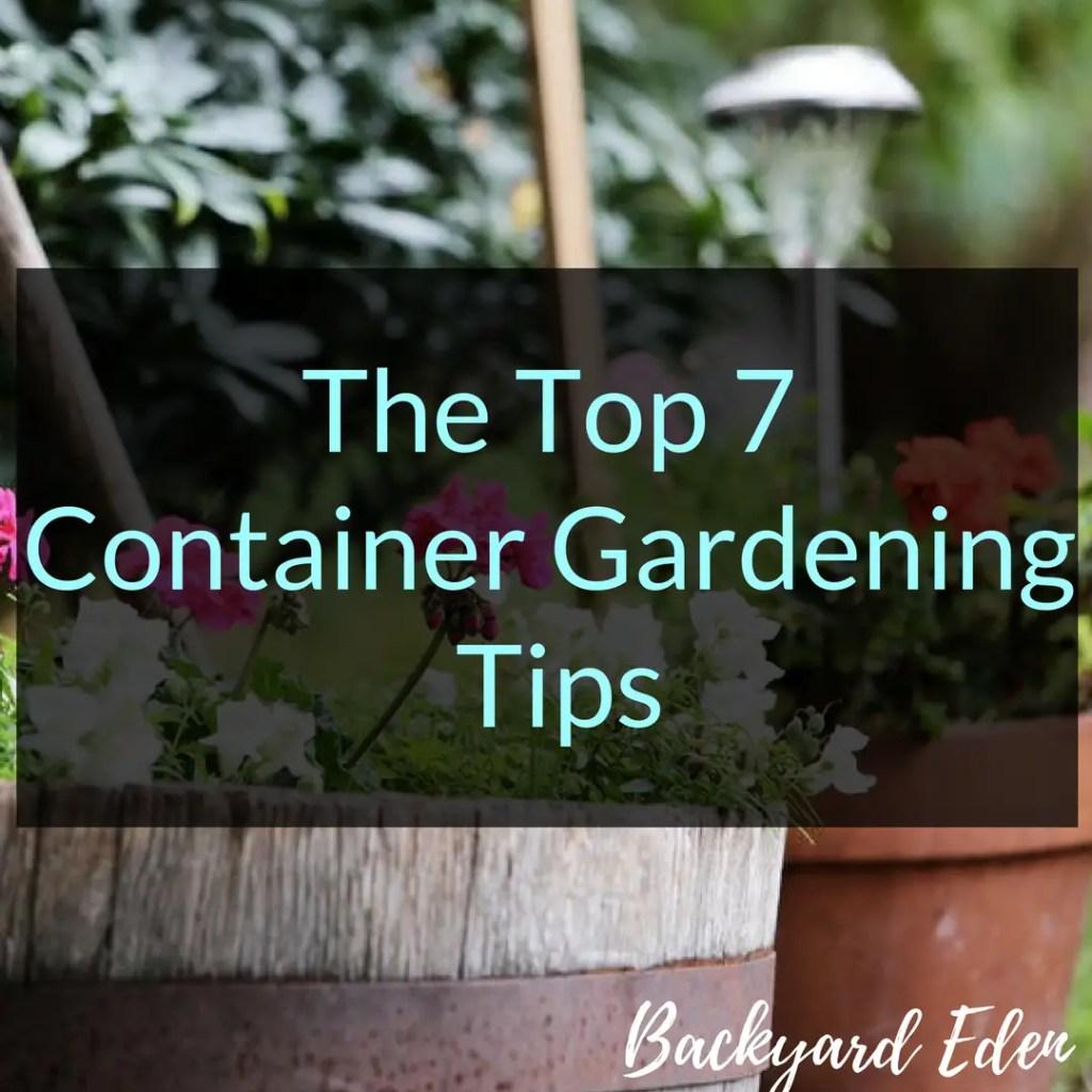 The Top 7 Container Gardening Tips, Container Gardening Tips, Container Gardening, Backyard Eden, www.backyard-eden.com