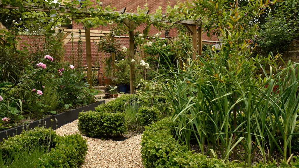 An overview of the garden showing the clipped box hedging.