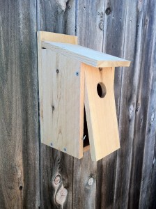 Bluebird House - Front Open