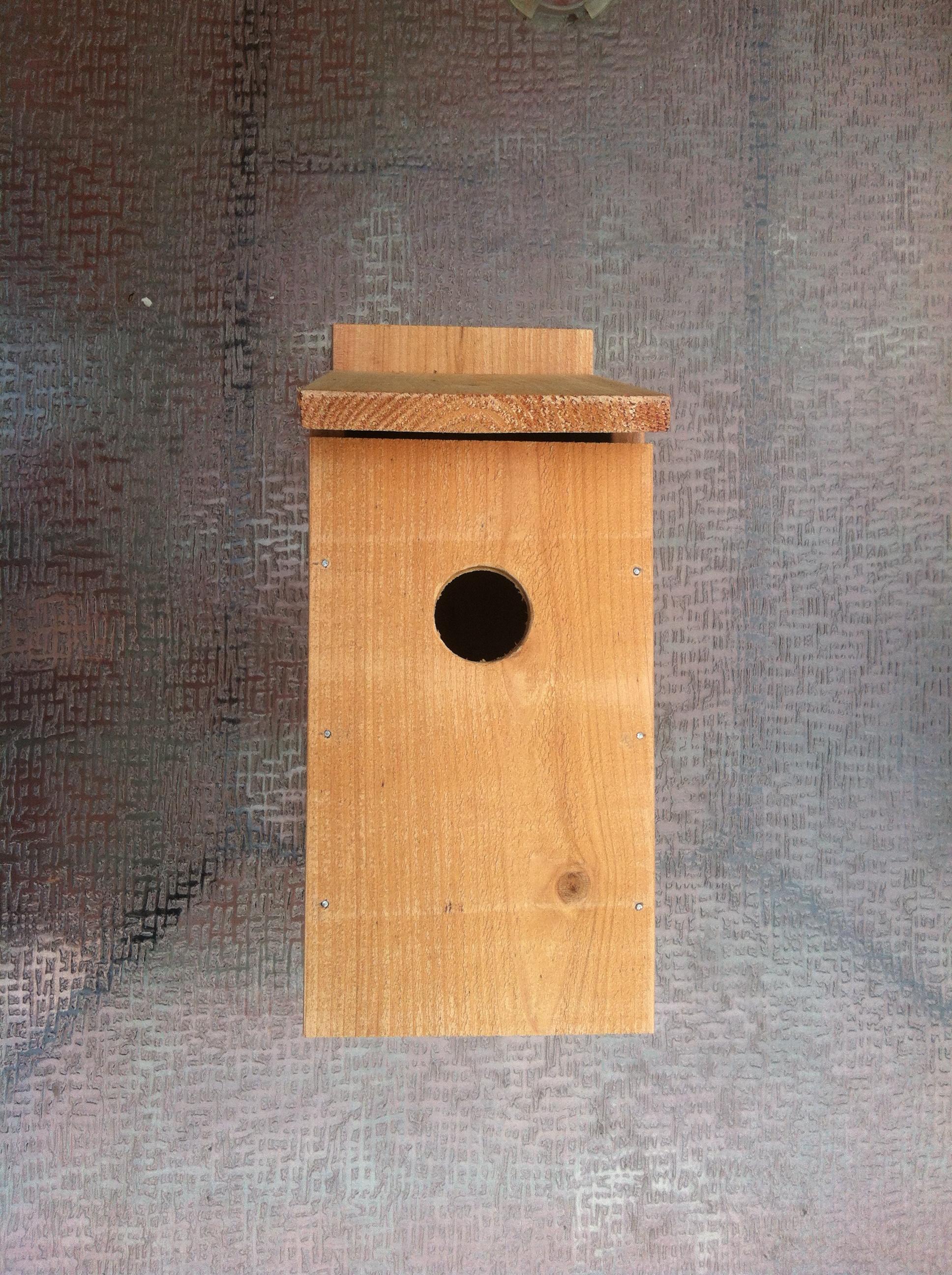 Bluebird house diy kit solutioingenieria Gallery