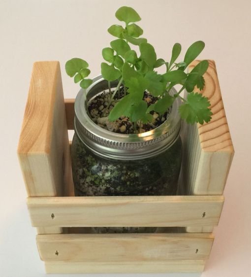 Single Herb Garden Kit