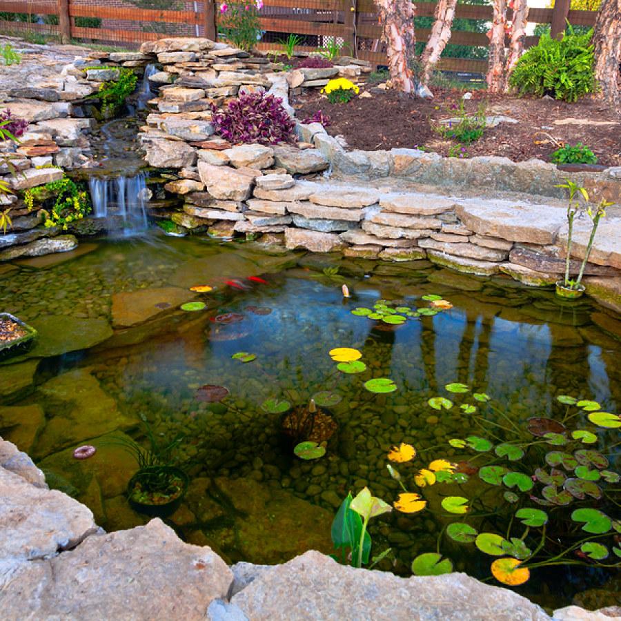 Koi Pond Designs - Landscaping Gazette Online on Backyard Koi Pond Designs  id=58313