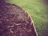 Pallet lawn edging