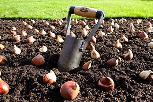 DeWit Bulb Planter with Short Handle DeWit Bulb Planter with Short Handle.