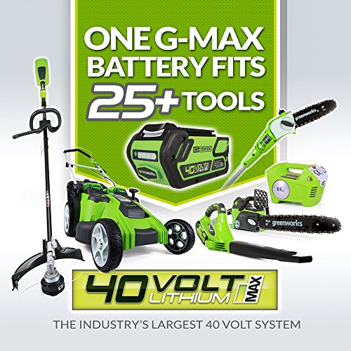 Greenworks 40V 185 MPH Variable Speed Cordless Blower Vacuum Greenworks 40V 185 MPH Variable Speed Cordless Blower Vacuum, 4.0 AH Battery Included 24322.