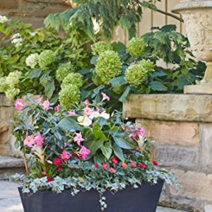Veradek Window Box Planter - 2 Pack Veradek Window Box Planter - 2 Pack (36 inches, Black).