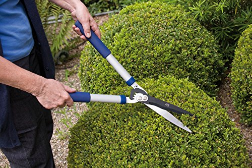 Spear & Jackson Razorsharp Geared Hedge Shears Spear & Jackson 8170RS/11 Razorsharp Geared Hedge Shears.
