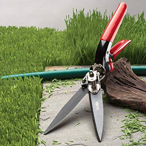 Kings County Tools Grass Trim-Shears with Steel Blades Kings County Tools Grass Trim-Shears with Steel Blades.