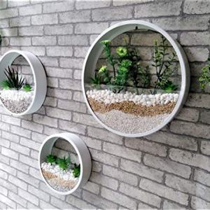 Pack of 3 White Round Wall Hanging Plant Terrarium Iron Planter Wall Hanging