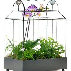 H Potter Glass Terrarium Succulent Planter Wardian Case Container