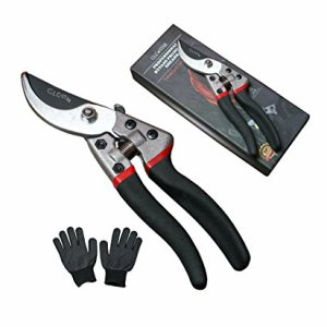 Professional Bypass Pruning Shears | Heavy Duty Garden Scissors with Non-Slip Handles | Garden Pruners, Clippers and Tree Trimmers with SK5 Sharp Blade | DURABLE Gardening Gloves | Ergonomic Design