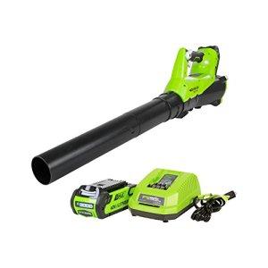 Greenworks 40V Electric Leaf Blower, 430 CFM / 115 MPH, 2.0Ah Battery and Charger