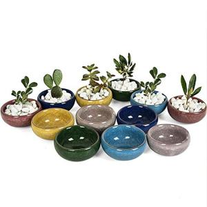 Gonioa 12 Pcs Small Ceramic Ice Crack Cactus Plant Pot with Drainage Hole,Succulent Plant Pot Container Planter Full Colors Gift for Mom Sister Aunt Best for Home Restaurant Table Desk Decoration