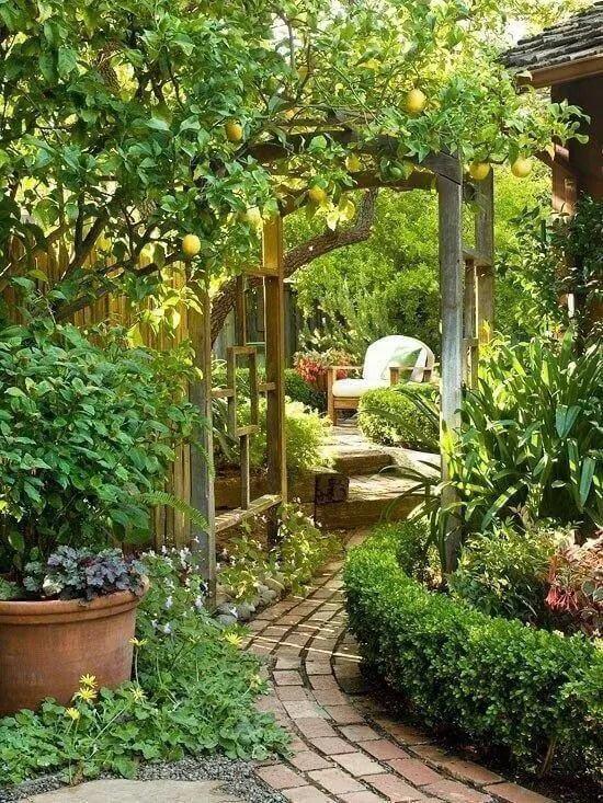 34 Beautiful Backyard Gardens Projects You Didn't Know You ... on Beautiful Backyard Ideas id=14048