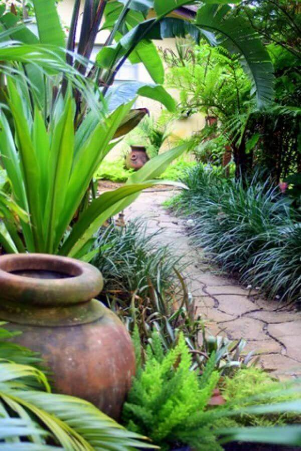 28 Refreshing Tropical Landscaping Ideas on Tropical Backyards  id=53370