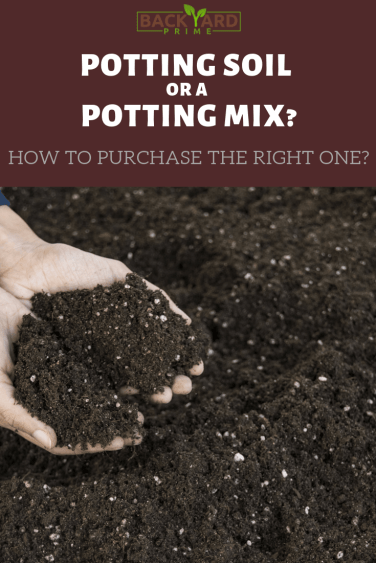 Potting Soil or a Potting Mix? How to Purchase the Right One? 4
