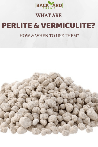 What Are Perlite & Vermiculite? How & When to Use Them? 8