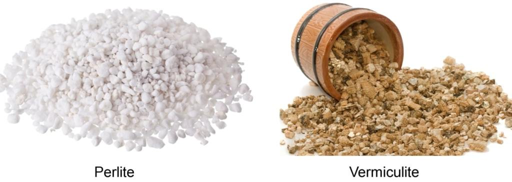 What Are Perlite & Vermiculite? How & When to Use Them? 7