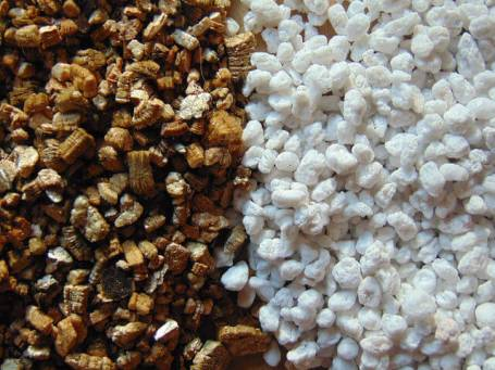 What Are Perlite & Vermiculite? How & When to Use Them? 1