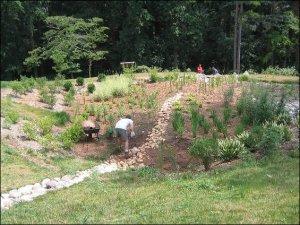 Virginia Tech bioretention project