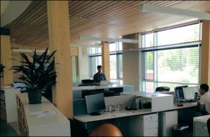 Most office lighting comes from outside, although RMI does use LED lights as backup.