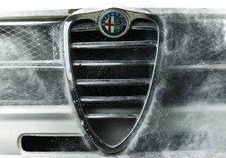 Alfa Romeo GT Junior - Alfa Shield