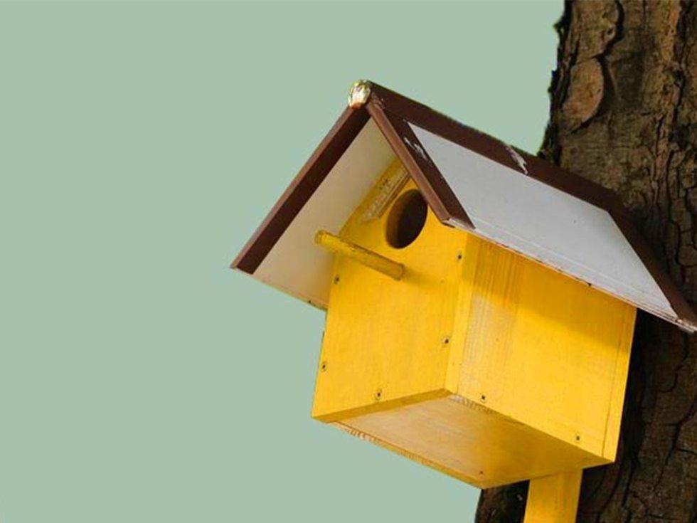 """""""L'art de l'habitat, l'art de vivre"""", un cours sur les styles d'intérieur."""