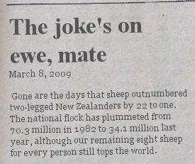 jokes-on-ewe